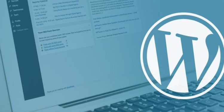 Mistakes To Avoid As A Beginner In WordPress